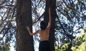 las ocho ramas del yoga ashtanga patanjali